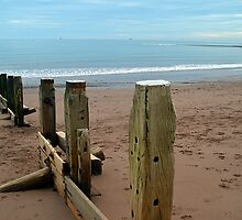 Teignmouth Groynes by Photography  by Mathilde
