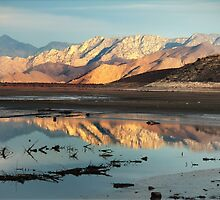 Tranquility in Reflection by Corri Gryting Gutzman