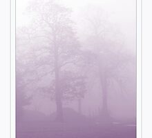 In the Fog by Jude Gidney