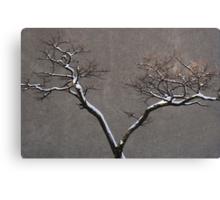 Urban Nature Canvas Print