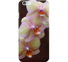 Orchid Perfection iPhone Case/Skin