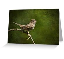 Fledgling Finch Awaiting Breakfast Greeting Card