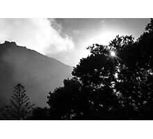 Silhouette Shades Photographic Print