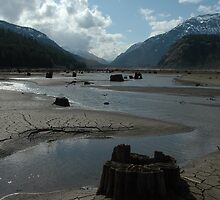 Mud flats 2 by hollymont