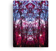 Tracery 2 Canvas Print