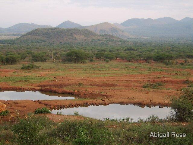 Kenyan Lakes by Abigail Rose