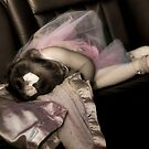 Sleepy in a Limo by Stacey Dionne