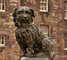 GREYFRIARS BOBBY. by Finbarr Reilly