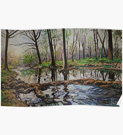 Cypress Creek in Wimberley, Texas Poster