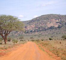 Kenyan Road Track by Abigail Rose