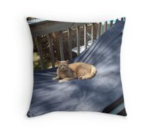 The hammock Throw Pillow