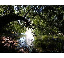 Cool Sanctuary Photographic Print