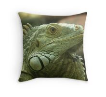 Be SCARD Throw Pillow