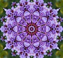Wonderment mandala  by Marilyn Baldey