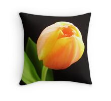 Two Lips For Kissing Throw Pillow