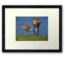 See, Son, That's How We Do It... Framed Print
