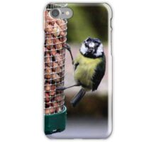 Are these nuts fresh? iPhone Case/Skin