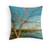 Fall Evening on Lake Toho Throw Pillow