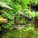 Reflection of a wooden bridge at Alfred Nicholas Gardens by Elana Bailey