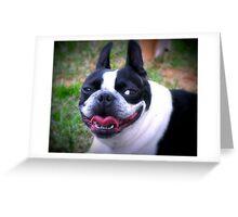 Big Smile ~ a dog's life!   Greeting Card