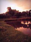 Down by the pond by schizomania