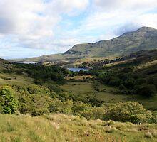 Connemara countryside by John Quinn