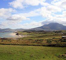 Connemara coastline by John Quinn