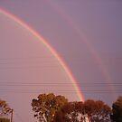 Rainbow by Sharon Stevens