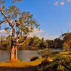 Swan Valley by HG. QualityPhotography
