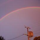 Rainbow ll by Sharon Stevens