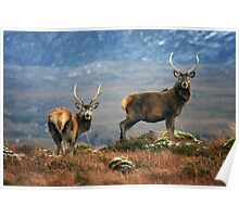 Twa Stags Poster