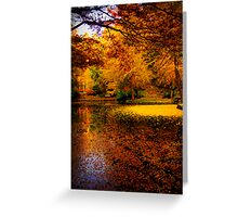 Leaves fill the lake in autumn at Alfred Nicholas Gardens Greeting Card
