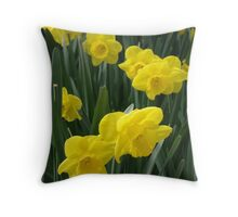 Sunny daffodils Throw Pillow