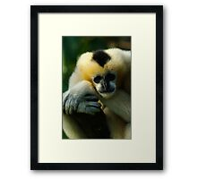 You Blink First Framed Print