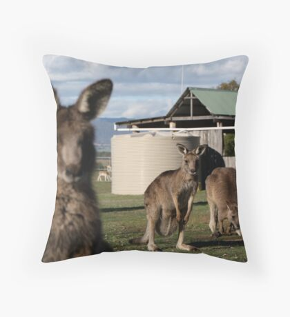 Gday Throw Pillow