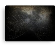 Veil of Darkness Canvas Print