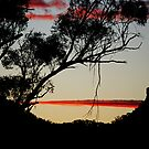 At the Close of Day - Gloucester NSW by Bev Woodman