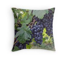 Bright Colors - Grapes of course Throw Pillow