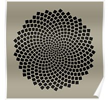 Sunflower Seed Fibonacci Spiral, Golden Ratio, Mathematics, Geometry Poster
