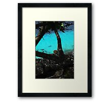 Bonaire  Cliff Side Framed Print