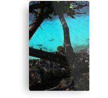 Bonaire  Cliff Side Metal Print