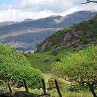 Beddgelert Snowdonia - North Wales by 29Breizh33