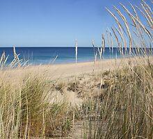 Preston Beach, WA by Karyn Lake