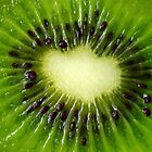 Kiwi Fruit by JuliaWright