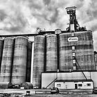 Grain Terminal by Mindy McGregor