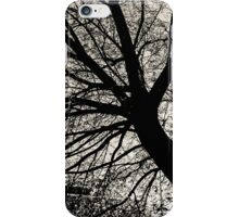Tree stems iPhone Case/Skin