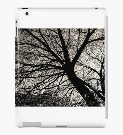 Tree stems iPad Case/Skin