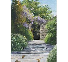 Meandering Garden Photographic Print