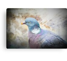 Pigeon of Peace Canvas Print
