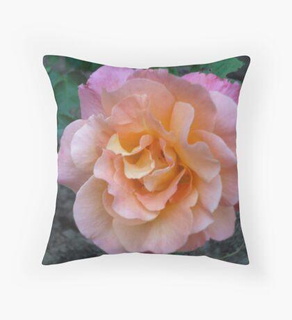 Peach Pink rose Throw Pillow